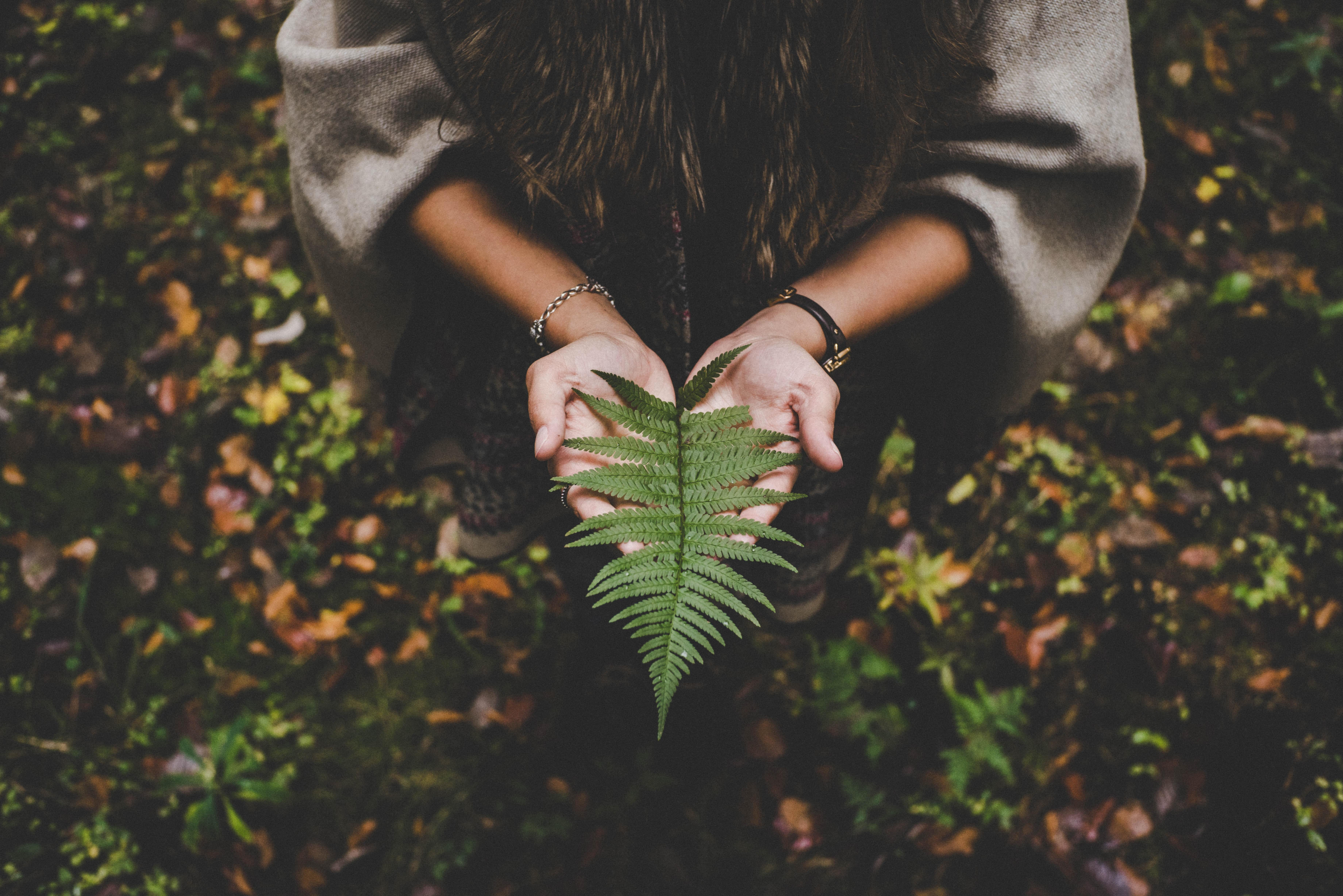 woman holding a leaf - career in environment